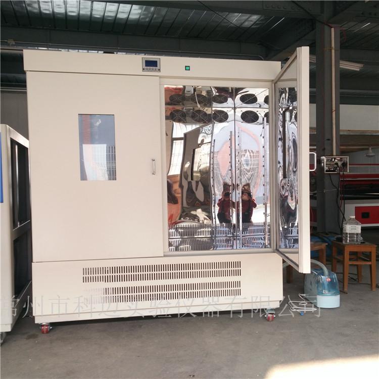 恒温恒湿试验箱,模拟试验箱